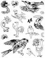 Gelová razítka - sada Ptáci 14x18cm
