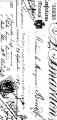 Zvětšit fotografii - Gelová razítka - sada Torino 10x20cm