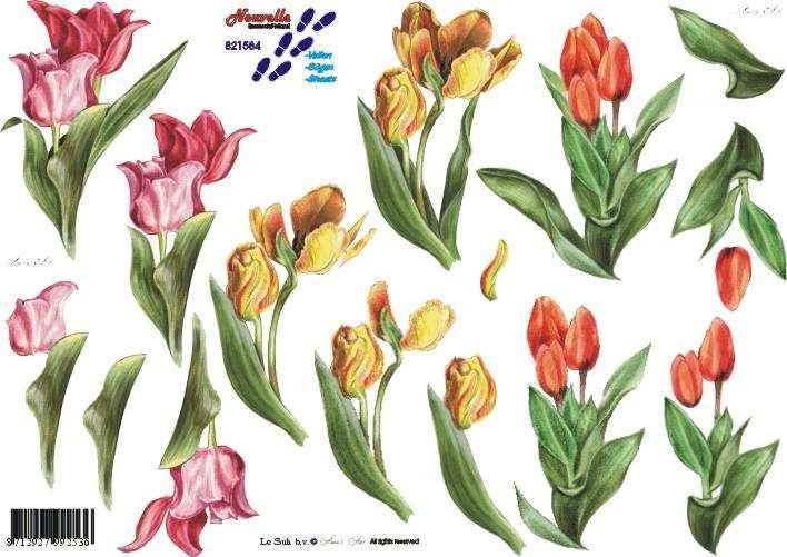 Tulipány - 3D papír Le Suh