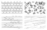 Gelová razítka - textura kytka 15x10 cm