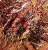 Kovové pláty - červenozlatá 3 ks Efco