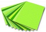 Blok s motivem Basics zelená 30 archů formátu 24x34 cm Folia