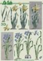 Květina žlutá a modrá - 3D papír