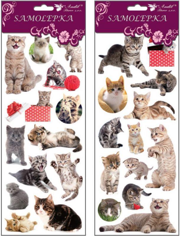 Samolepky kočky 30x12 cm