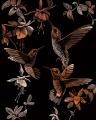 Vyškrabovací obrázek-Kolibříci ostatní